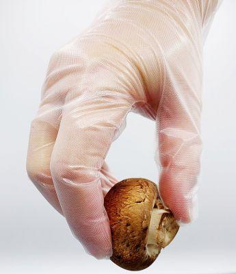 Hybrid Poly Gloves PF
